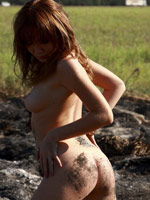 FREE GALLERY HERE